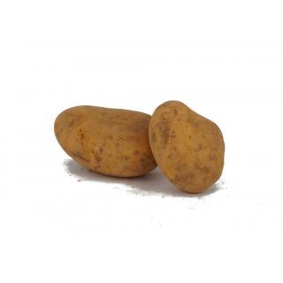 Frühkartoffeln vfk