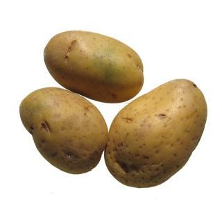 """Kartoffeln """"Laura"""" Sack vfk (rote Schale)"""