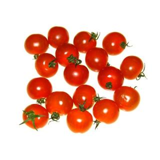 Cherrystrauchtomate