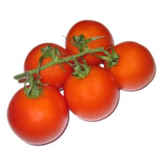 "Tomate Mini-Roma ""Ardiles"", eigen"