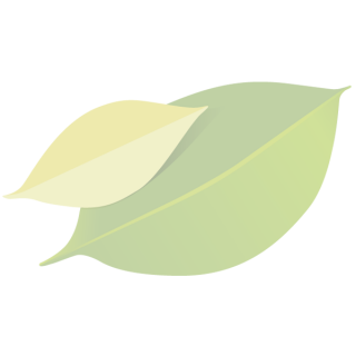 Ingwer in Honig (Frühjahrsblüte), klein