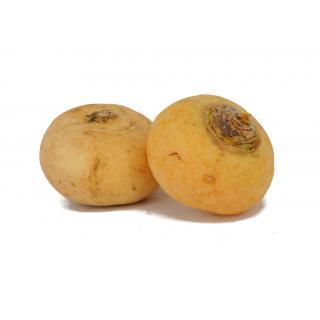Butterrübchen