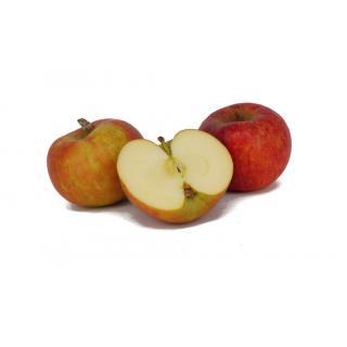 """Apfel """"Jonagored"""""""