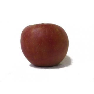 """Apfel """"Crimson Crisp"""""""