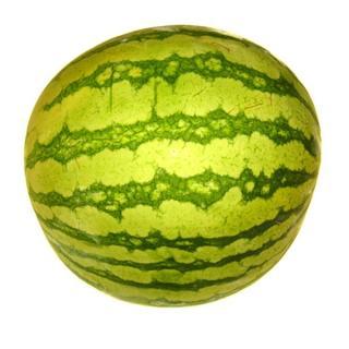 Wassermelone, kernarm
