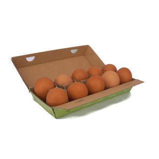 Eier, Bio 10 Stk