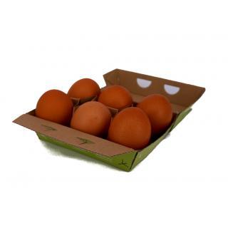 Eier, Bio, 6 Stk